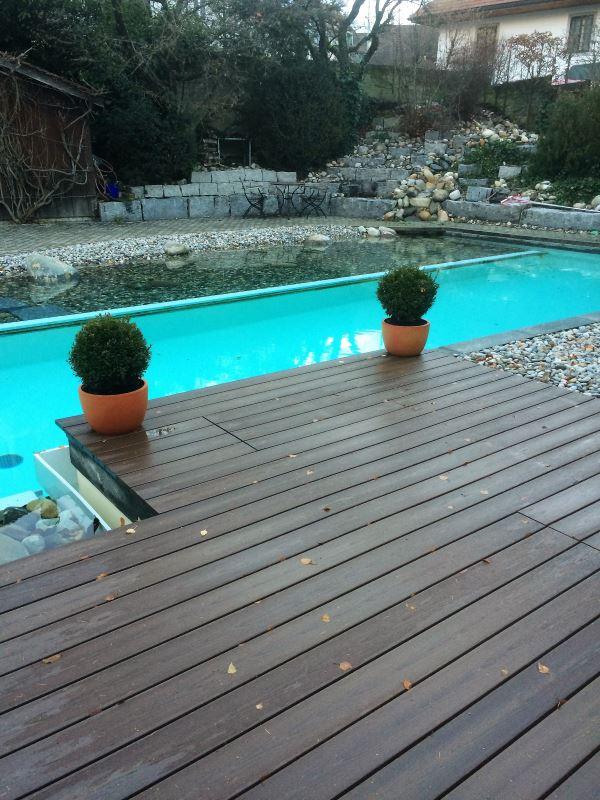 Poolbau Kombination Swimmingpool mit Naturteich
